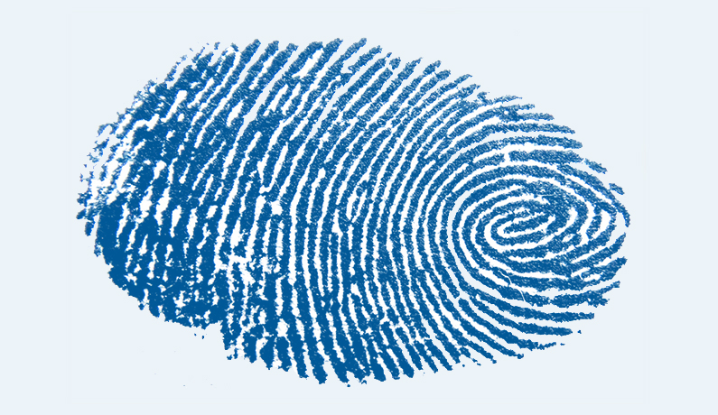 Legge Concretezza: regolamento sulle impronte digitali al vaglio del Garante della Privacy
