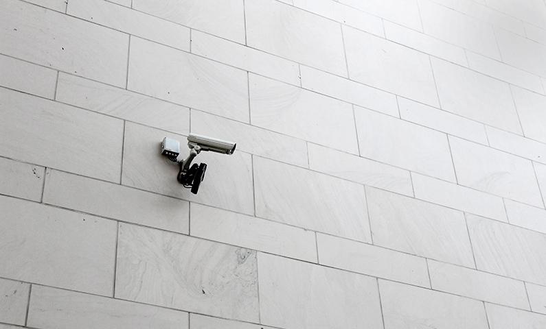 Videosorveglianza e Privacy: approvate le linee guida 3/2019
