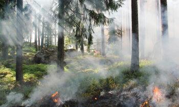 lotta agli incendi