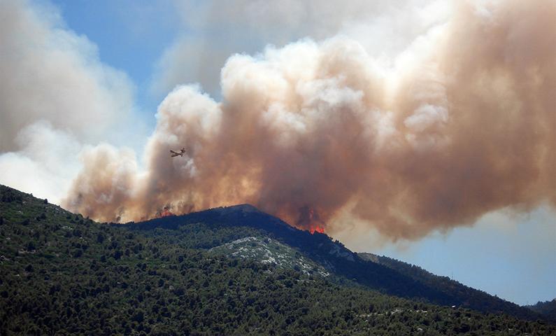 Incendi boschivi: approvate le disposizioni del Decreto Incendi